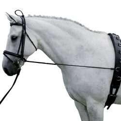 premium horse neck stretcher