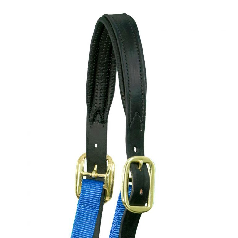 padded leather replacement halter crown