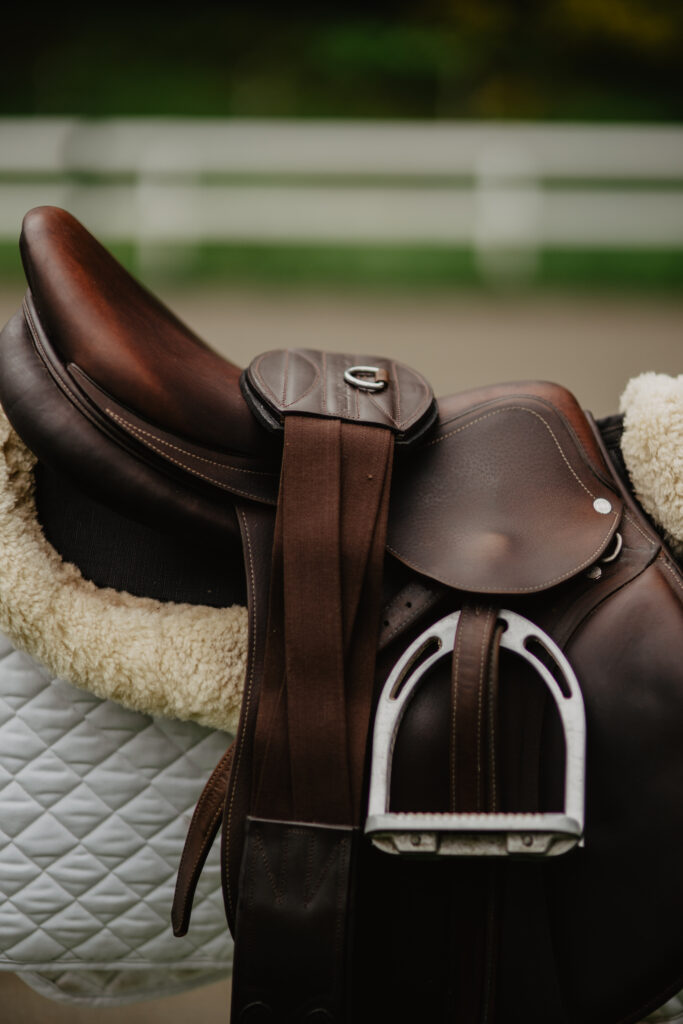 tapestry equine girth on saddle