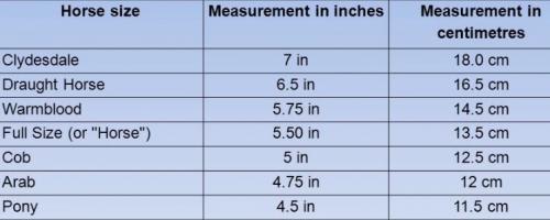TRUST bit size chart